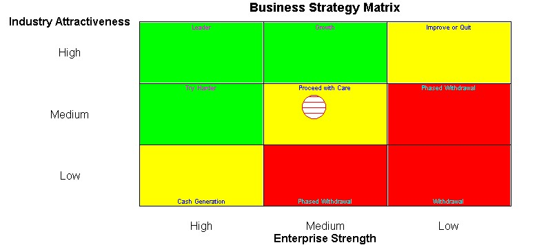 sarah lee 9 cell industry attractiveness business strength matrix